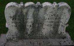 Elmer B Anderson