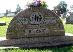 Paul H Berry