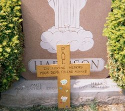 Paul E. Harrison