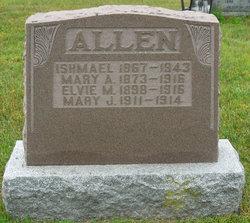 Elvie May Allen