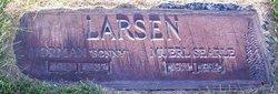 Muerl <i>Searle</i> Larsen