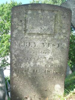 Abbey Vesta Coffin