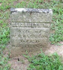 Elizabeth W Harrison