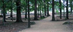 University Memorial Grove
