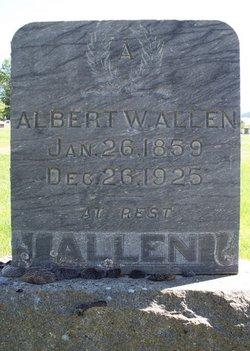Albert Willis Allen