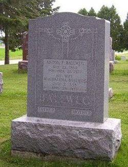 Anton F Ballweg