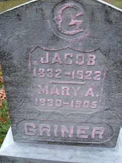 Jacob Griner