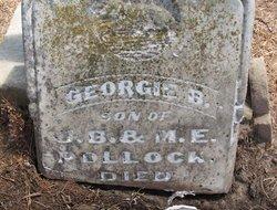 Georgie B Pollock