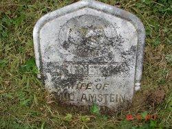 Trenette Amstein