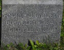 Andrew J Carlson