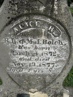 Alice R Bolch
