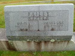 Sarah Lovisa <i>Gale</i> Bailey