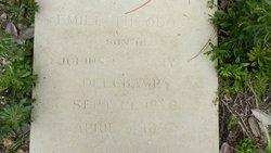 Emile Theodore Delchamps