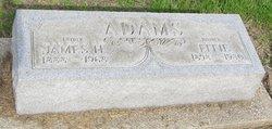 Effie <i>Engle Chambers</i> Adams