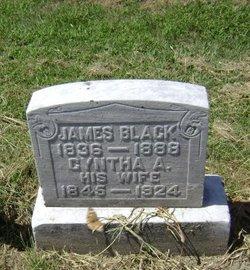 Cyntha A Black