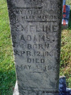Emeline Mary <i>Hill</i> Adams