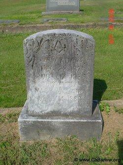 Mary J <i>Land</i> Adams