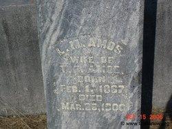 Lexington Medora <i>Dellinger</i> Amos