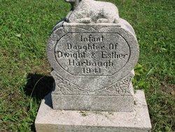 Infant Harbaugh