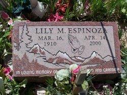 Lily M Espinoza