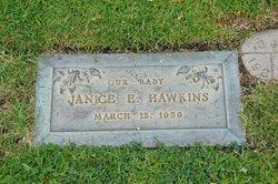 Janice E Hawkins