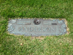 Anne J Anderson