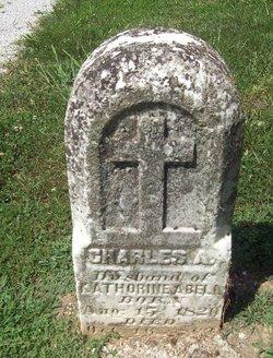 Charles A Abel