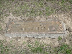 Robert W Mitchell, Jr