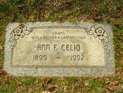Ann Francis <i>Duane</i> Celio