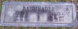Charles Alexander Baumhauer