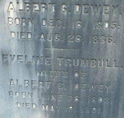 Albert G. Dewey