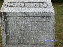 Susan M Callon