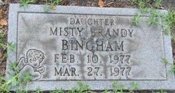Misty Brandy Bingham