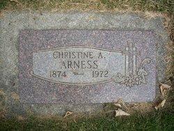 Christine A Arness