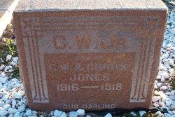 Charles Wilson C.W. Jones, Jr
