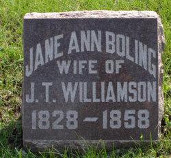 Jane Ann <i>Boling</i> Williamson
