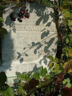 George W Allen