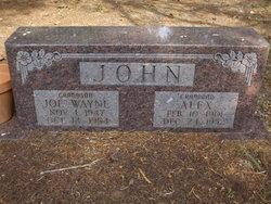 Joe Wayne John