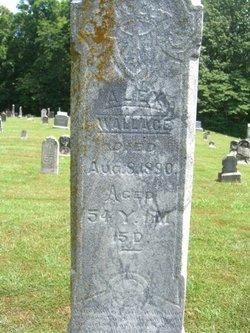 James Alexander Wallace