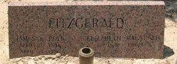 James Knox Polk Fitzgerald