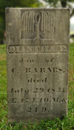Dianatha Barnes