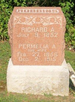 Richard A. Robbins