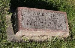Wilhelmine Dorothea Minnie <i>Luckow</i> Amborn