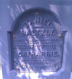 Daniel Baltzly