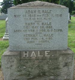 Adam D Hale