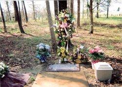 Jenkins Family Cemetery