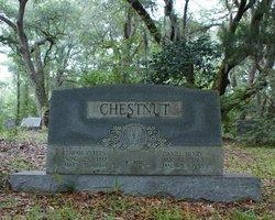 Daniel Henry Chestnut