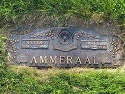 A. Peter Ammeraal