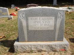Mary Elizabeth <i>Dickinson</i> Allison