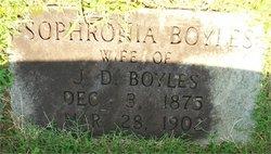 Sophronia Ellen Boyles